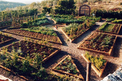 Image Result For When To Start A Vegetable Garden In California