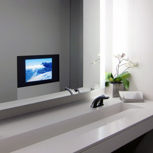 Detail of ultra modern public bathroom interior, decorated with live orchid flower and TV showing views of mountains