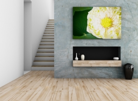interior design concept, 3d rendering